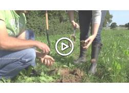 La gestion de la fertilit des sols en ab chambre d - Chambre d agriculture de la manche ...