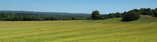 Toutes les formations des chambres d'agriculture de Normandie sur le thème de l'environnement et de la réglementation (Directives Nitrates, ...)
